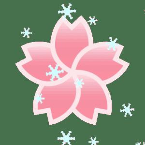 Blossom Discord Server